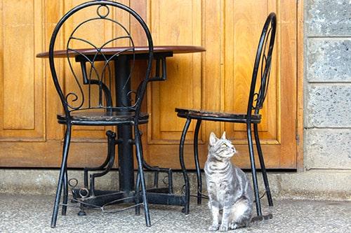 entretenir mobilier jardin terrasse chaise