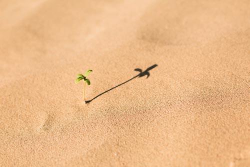Couleur ocre sable